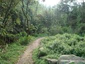 【竹縣】關西 四寮溪戶外生態教室(步道):步道