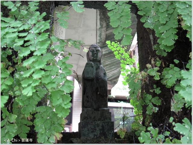 菩3.JPG - 【台中。大里】菩薩寺