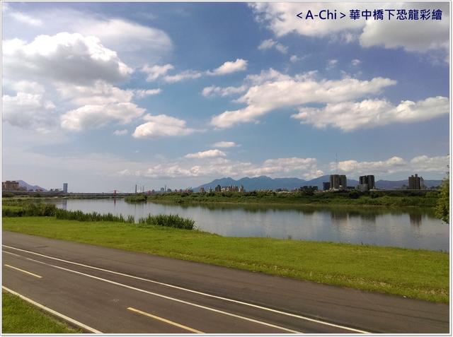 4.jpg - 【新北市】永和 華中橋下恐龍彩繪