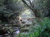 【竹縣】關西 四寮溪戶外生態教室(步道):四寮溪