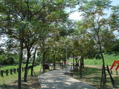 【雲林】西螺 西螺大橋及公園 :公園內