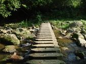 【竹縣】關西 四寮溪戶外生態教室(步道):石階