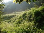 【竹縣】關西 四寮溪戶外生態教室(步道):自然保護區