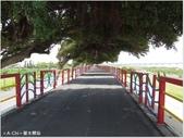 【台中。龍井】異國風情的麗水驛站(麗水漁港):綠樹成蔭