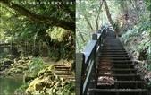 【竹縣】關西 四寮溪戶外生態教室(步道):叉路口
