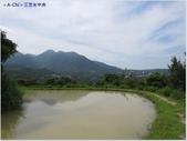【新北。三芝】新北最甜心水池 三芝田心(水中央):心水池