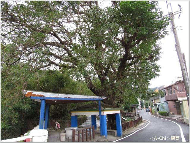 街26.JPG - 【新竹。關西】街上健走輕旅行