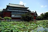 2011.台北植物園(上)初夏荷影:DSC07023