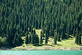 新疆十六觀-_通往淨土與穢土的邊際:樹想2