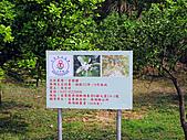 2011西湖柚花季:IMG_7027.JPG