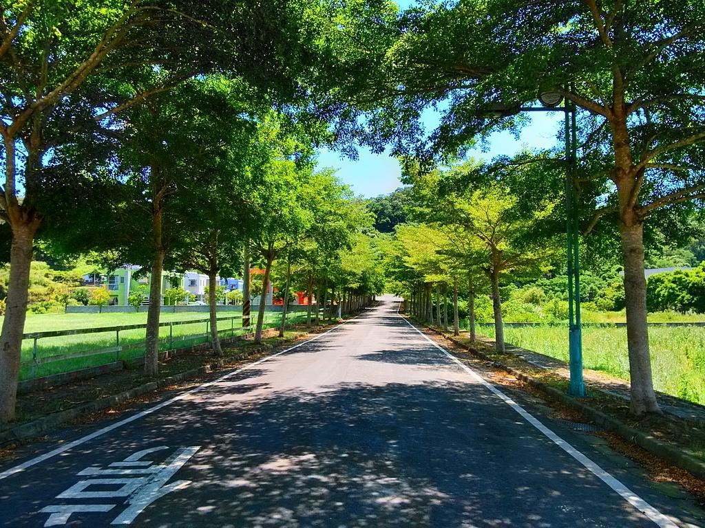 2013西湖單車成年禮探路:260480197_x.jpg