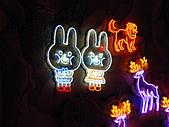100年台灣燈會:IMG_6517.JPG