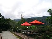 南庄桂花園:IMG_4658.JPG