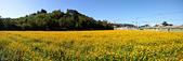 2014西湖甘藷農業之旅與白柚品嘗活動:IMG20141122123225.jpg