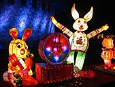 100年台灣燈會:IMG_6459.JPG