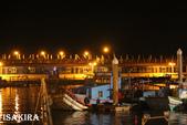 2013苗栗海洋外埔漁港:261940002_.jpg