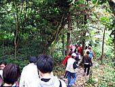 南庄護魚步道:IMG_4715.JPG