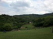 飛牛牧場 flying cow:DSC_0636.JPG