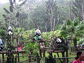 2010桐花季在苗栗香格里拉樂園:IMG_1167.jpg