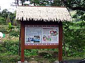 南庄護魚步道:IMG_4697.JPG