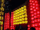 100年台灣燈會:IMG_6530.JPG