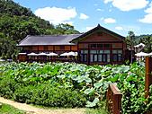桃米紙教堂:IMG_2339.JPG