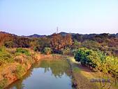 2014柚子山:IMG_20140316_165002_HDR.jpg