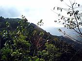 南庄向天湖:IMG_5010.JPG