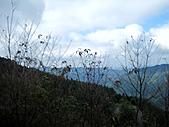 南庄向天湖:IMG_4891.JPG