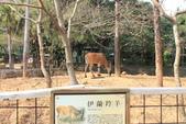 新竹市立動物園:251868180_x.jpg