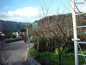 南庄GO:IMG_5027.JPG