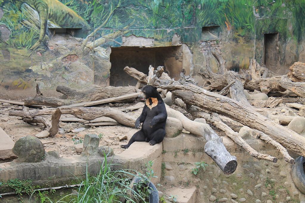 新竹市立動物園:251870515_x.jpg