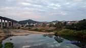 西湖花海:IMG_7618.JPG