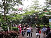2010桐花季在苗栗香格里拉樂園:IMG_1138.jpg