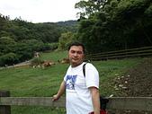飛牛牧場 flying cow:DSC_0645.JPG