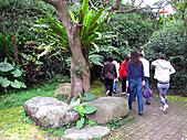 南庄桂花園:IMG_4800.JPG