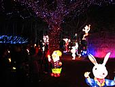 100年台灣燈會:IMG_6606.JPG