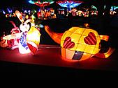 100年台灣燈會:IMG_6541.JPG