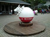 飛牛牧場 flying cow:DSC_0647.JPG