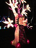 100年台灣燈會:IMG_6609.JPG