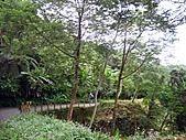 2010苗栗單車快樂遊(三) 大湖→雪見遊憩區:IMG_4202.JPG