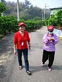 2011西湖柚花季:IMG_7042.JPG