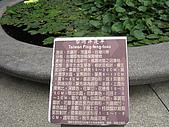 100508東山荷花開:IMG_1379.jpg