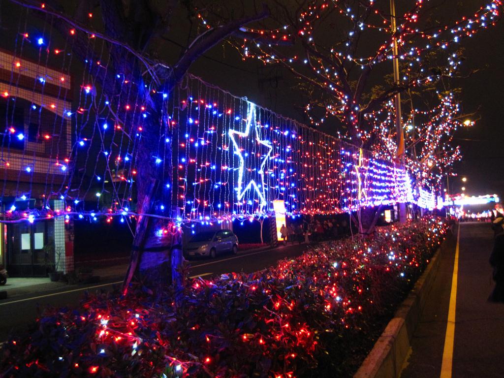 100年台灣燈會:IMG_6426.JPG
