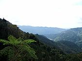 南庄向天湖:IMG_4878.JPG