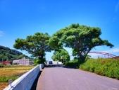 2013西湖單車成年禮探路:260479001_x.jpg