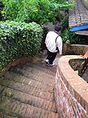 南庄桂花園:IMG_4837.JPG