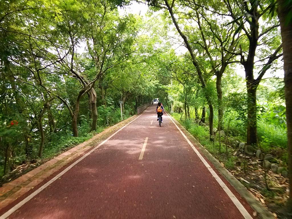東豐自行車道:259719521_x.jpg