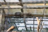 新竹市立動物園:251868490_x.jpg