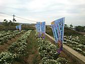 2012銅鑼杭菊與客家園區:DSC_5493.JPG